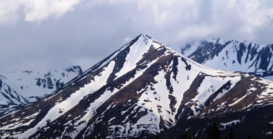 Mountain along the Parks Highway - Around Alaska by Judy Jessee
