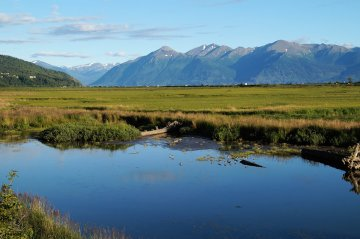 Potter Marsh, just south of Anchorage